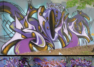 bcome-totem-sever-2008