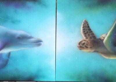 dolphin-turtle